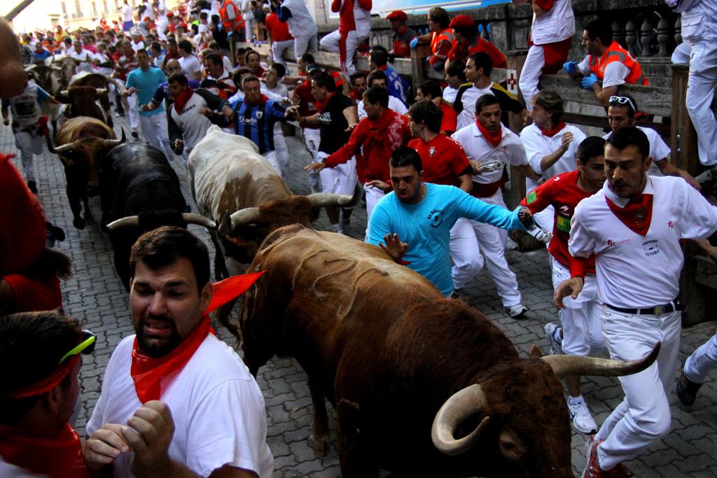Warning: Bulls may seem bigger than they appear! By Asier Solana Bermejo, Flikr | CC-BY-SA 2.0