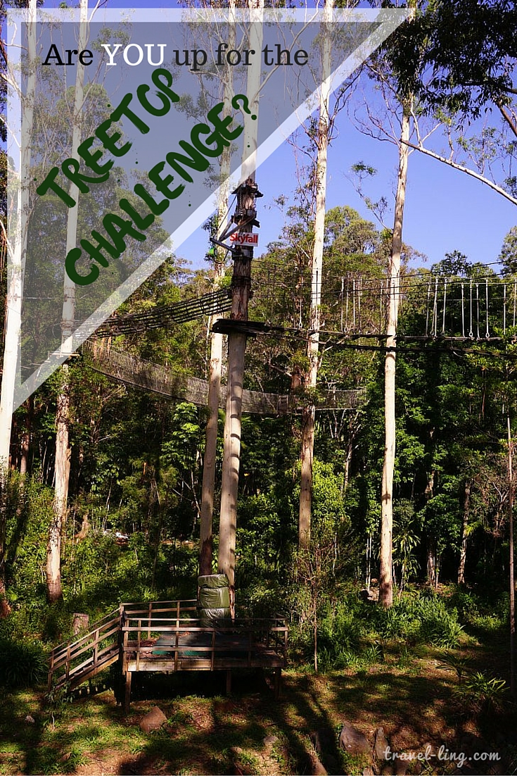 Ropes courses, flying foxes and more! Are you up for it?