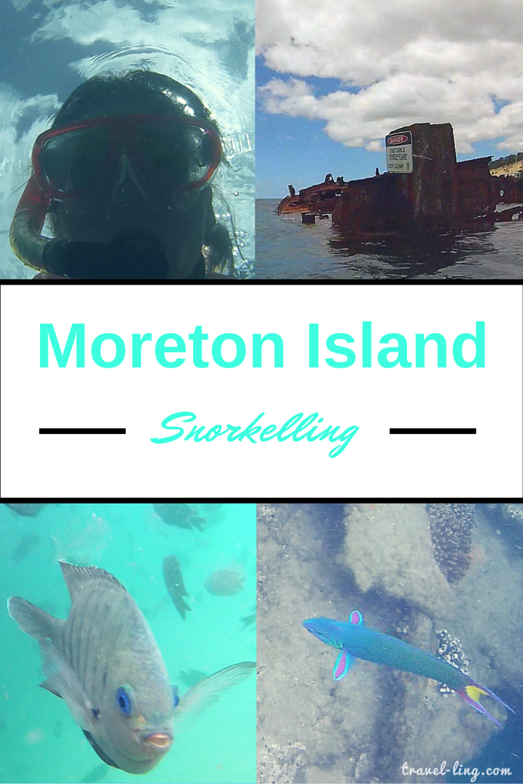 Beautiful snorkelling off Moreton Island