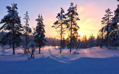 A weekend in the Finnish Lapland