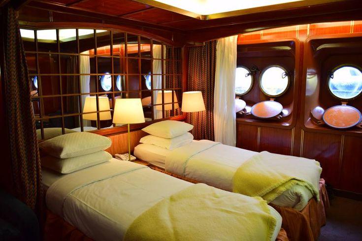 Cruise comfort - Meg Jerrard